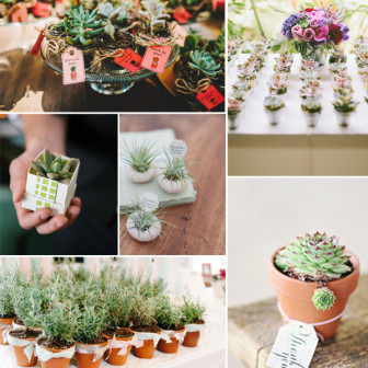 2014-trending-fall-wedding-favors-with-cute-plants