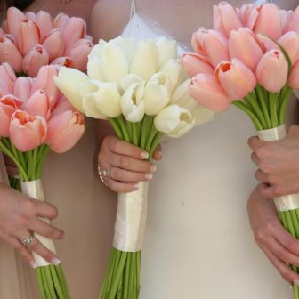 tulips-pink-white-bouquet